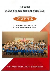 program-212x300